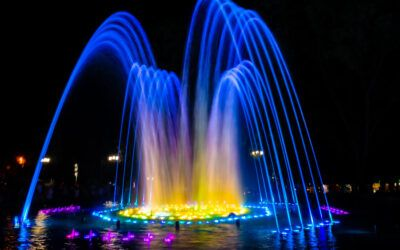 Water Features' Importance in Biophilic Design
