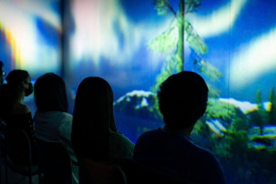The immersive audio from ResonX greatly accentuated the Auroa Project's visuals.
